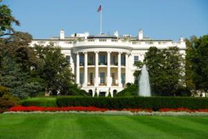 white house big photo